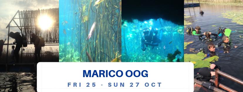 Scuba Divers Diving Marico Oog